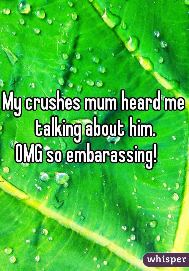 My crushes mum heard me talking about him. OMG so embarassing!