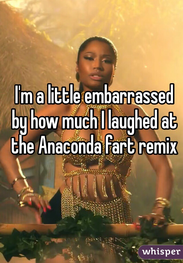 I'm a little embarrassed by how much I laughed at the Anaconda fart remix
