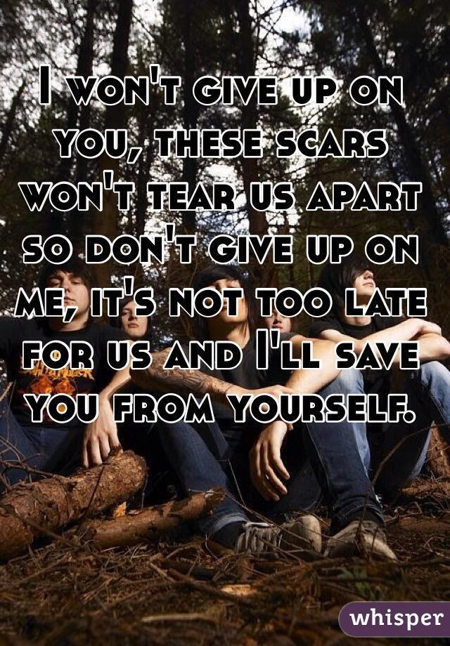 I won't give up on you, these scars won't tear us apart so don't give up on me, it's not too late for us and I'll save you from yourself.