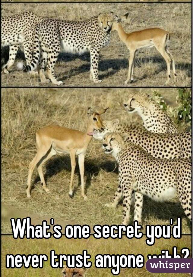 What's one secret you'd never trust anyone with?