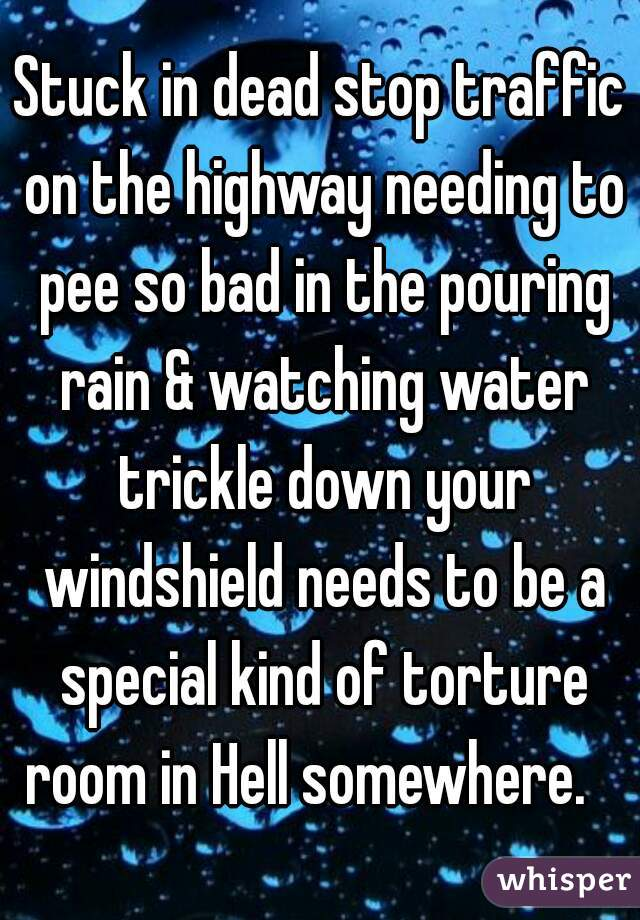 Stuck in dead stop traffic on the highway needing to pee so bad in the pouring rain & watching water trickle down your windshield needs to be a special kind of torture room in Hell somewhere.