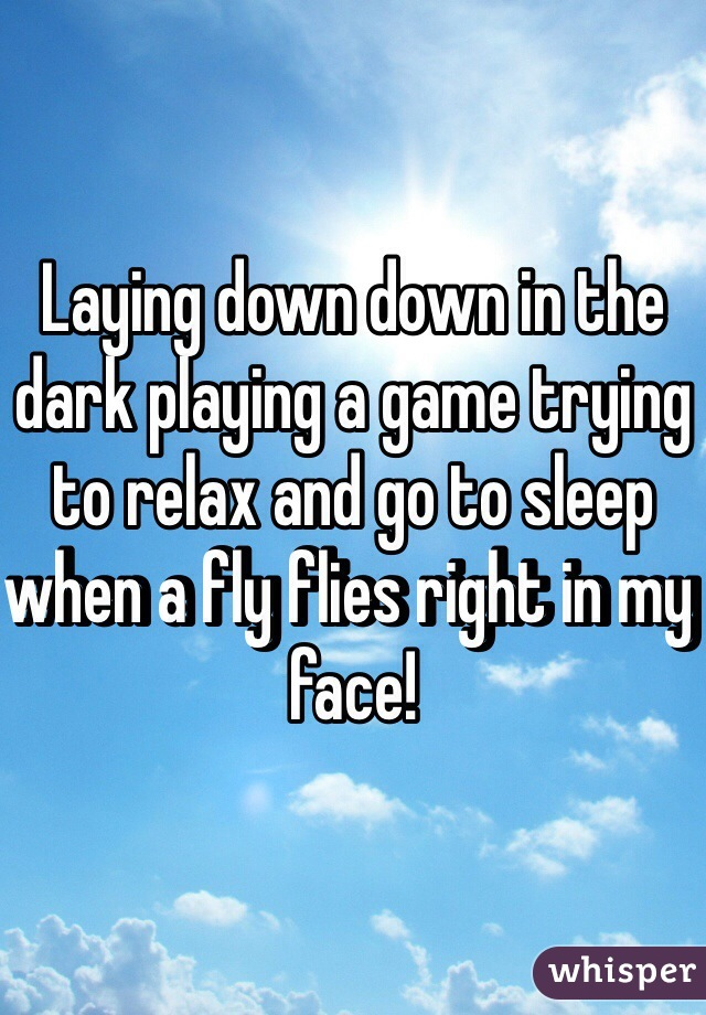 Laying down down in the dark playing a game trying to relax and go to sleep when a fly flies right in my face!
