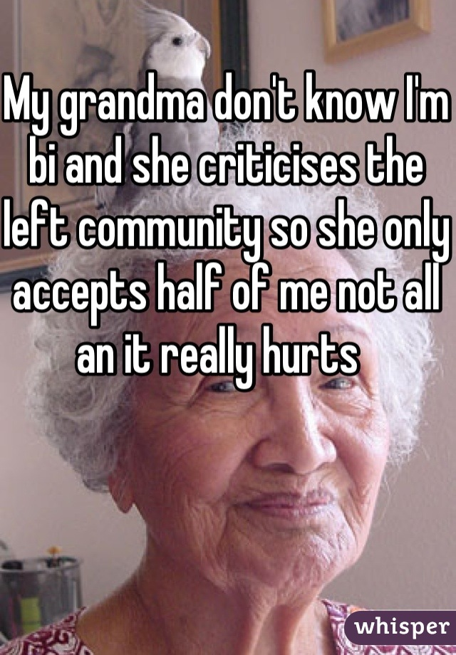 My grandma don't know I'm bi and she criticises the left community so she only accepts half of me not all an it really hurts