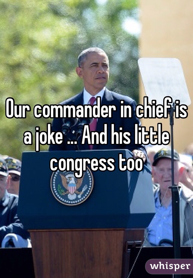 Our commander in chief is a joke ... And his little congress too