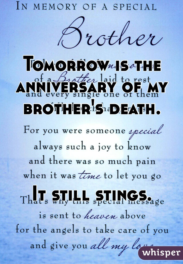 Tomorrow is the anniversary of my brother's death.     It still stings.