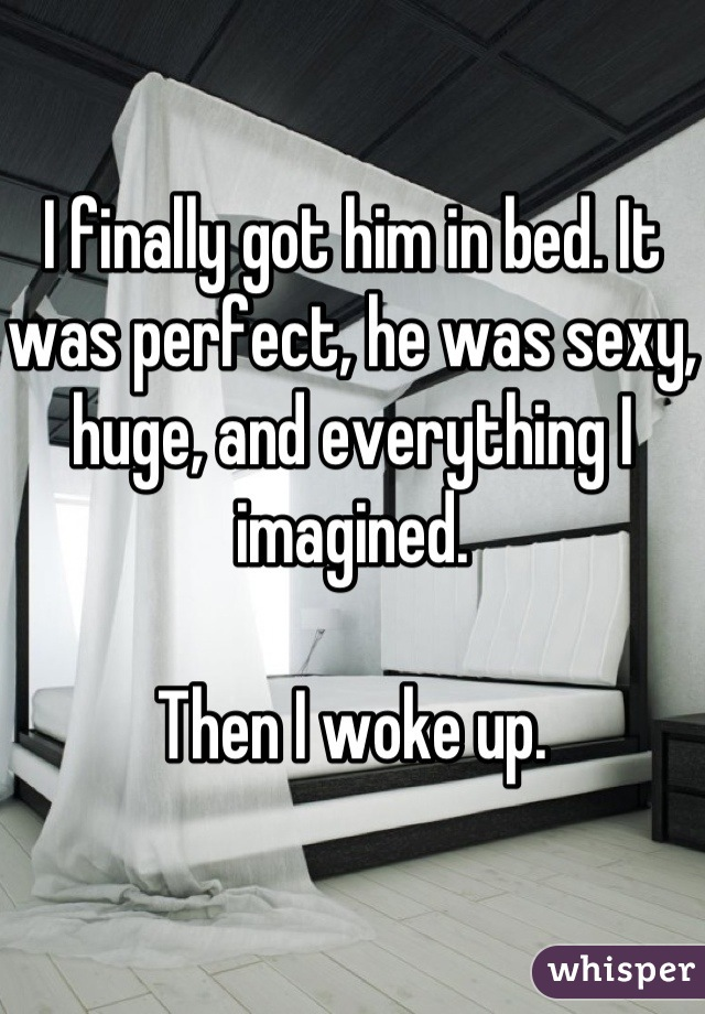I finally got him in bed. It was perfect, he was sexy, huge, and everything I imagined.  Then I woke up.