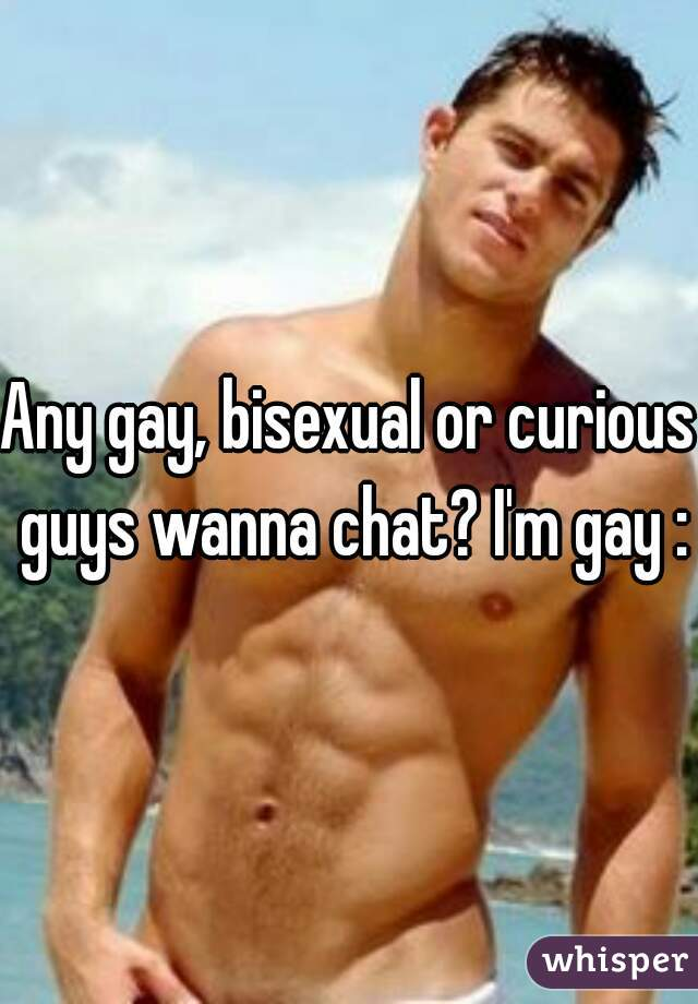 Any gay, bisexual or curious guys wanna chat? I'm gay :)