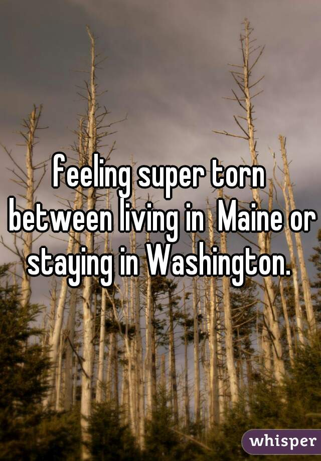 feeling super torn between living in  Maine or staying in Washington.