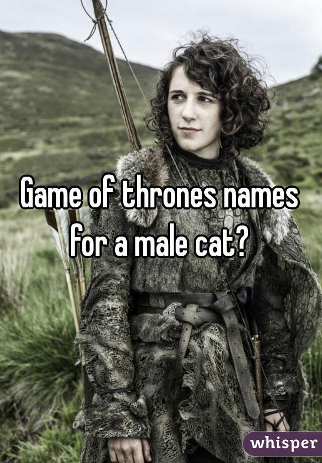 Game of thrones names for a male cat?