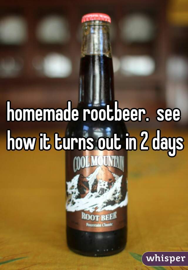 homemade rootbeer.  see how it turns out in 2 days