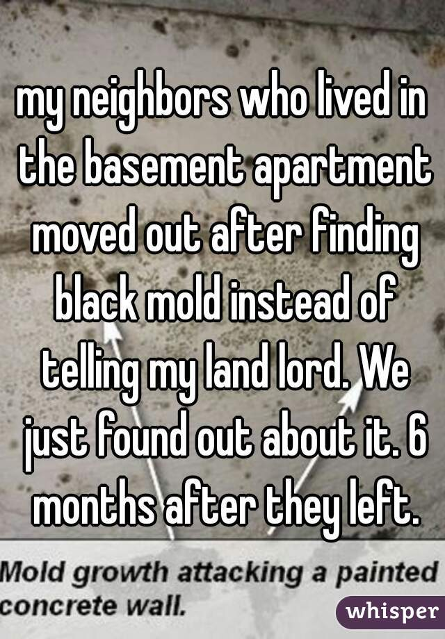 my neighbors who lived in the basement apartment moved out after finding black mold instead of telling my land lord. We just found out about it. 6 months after they left.