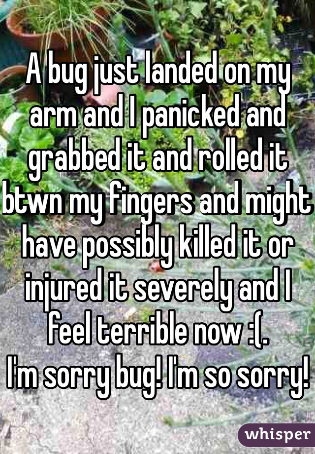 A bug just landed on my arm and I panicked and grabbed it and rolled it btwn my fingers and might have possibly killed it or injured it severely and I feel terrible now :(.  I'm sorry bug! I'm so sorry!