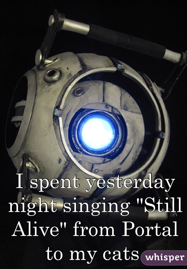"""I spent yesterday night singing """"Still Alive"""" from Portal to my cats."""