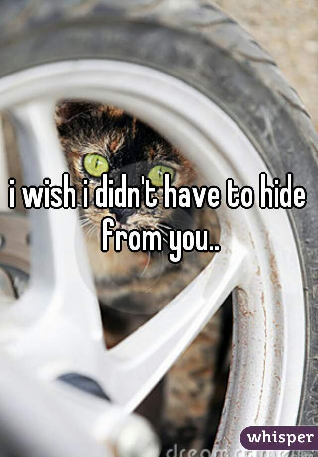 i wish i didn't have to hide from you..