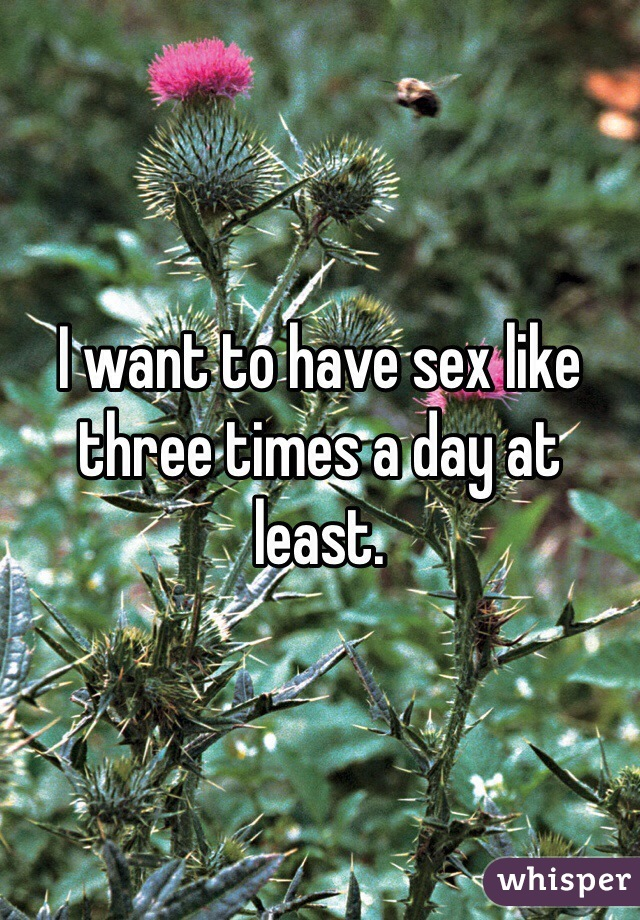 I want to have sex like three times a day at least.