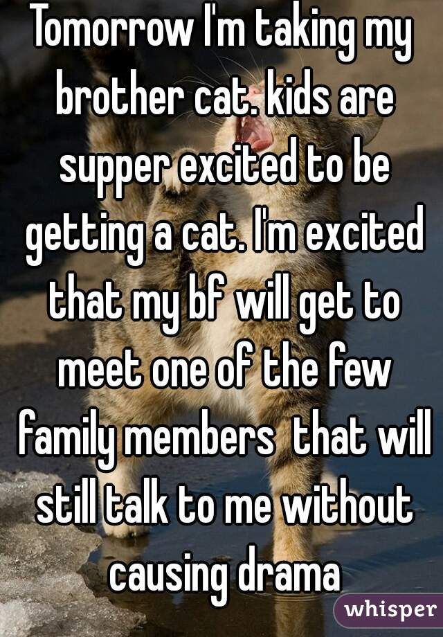 Tomorrow I'm taking my brother cat. kids are supper excited to be getting a cat. I'm excited that my bf will get to meet one of the few family members  that will still talk to me without causing drama