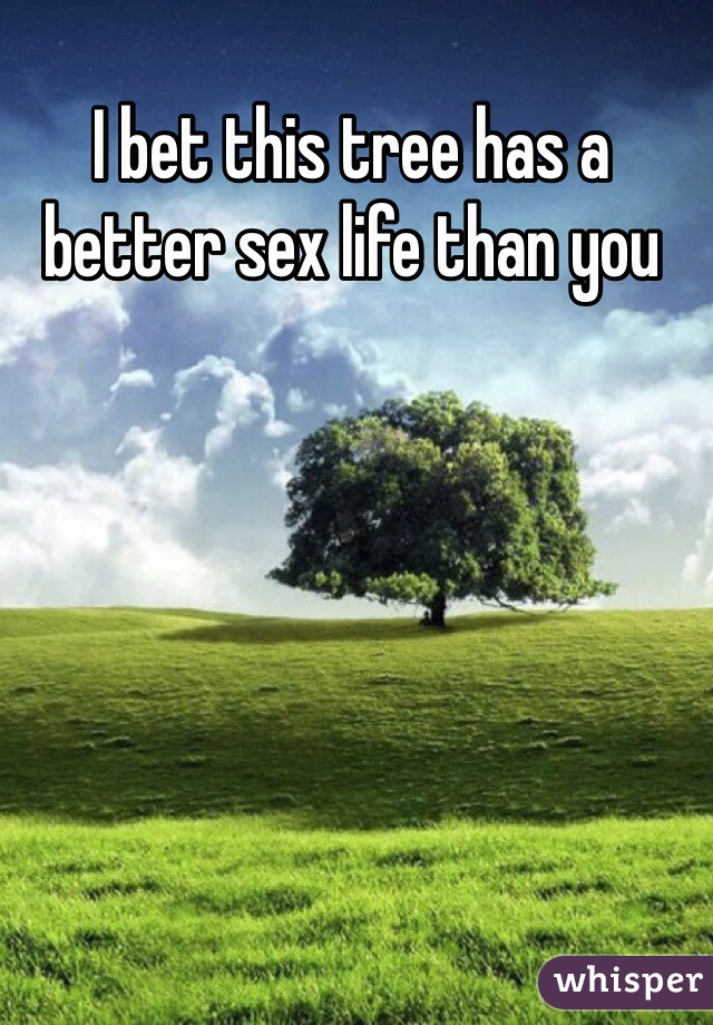I bet this tree has a better sex life than you