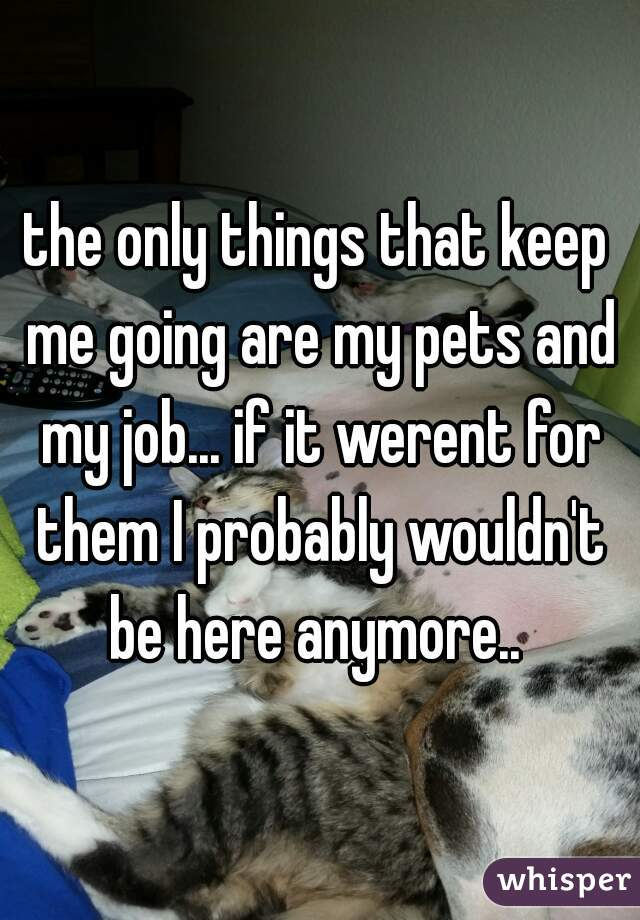 the only things that keep me going are my pets and my job... if it werent for them I probably wouldn't be here anymore..