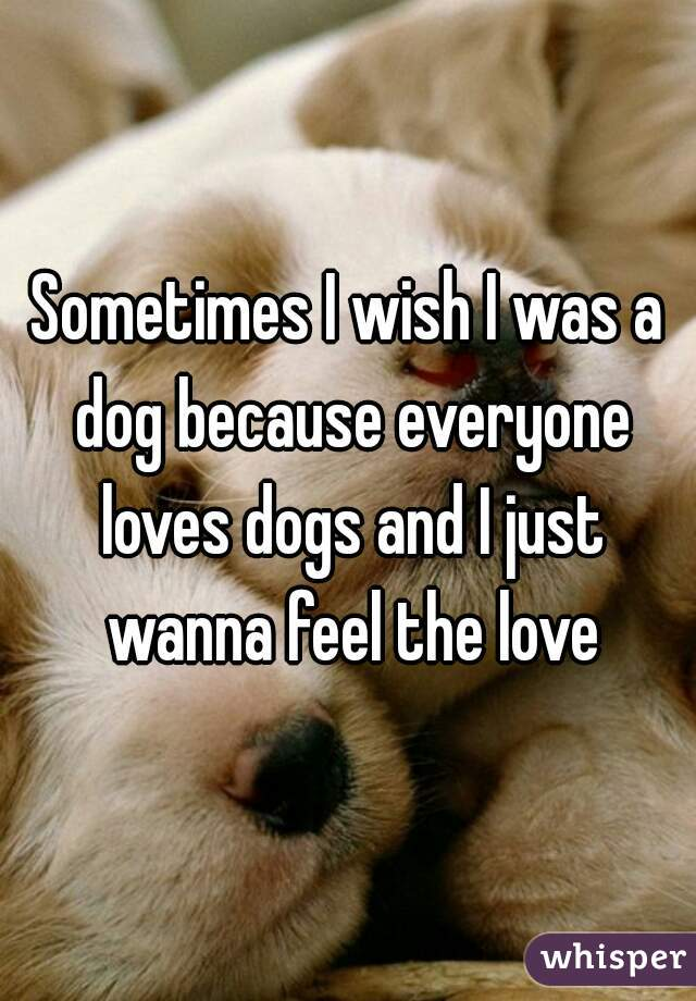Sometimes I wish I was a dog because everyone loves dogs and I just wanna feel the love