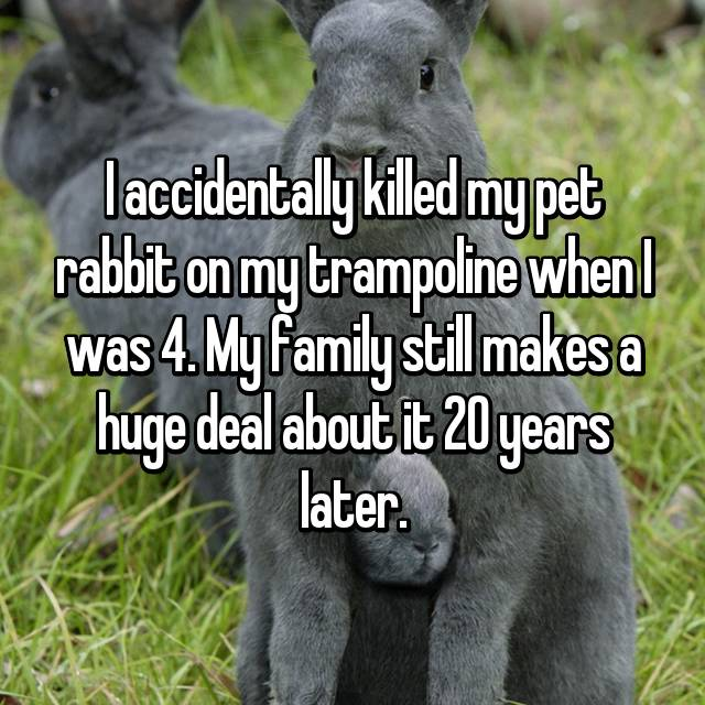 I accidentally killed my pet rabbit on my trampoline when I was 4. My family still makes a huge deal about it 20 years later.