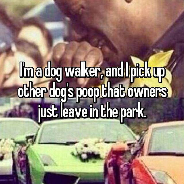 I'm a dog walker, and I pick up other dog's poop that owners just leave in the park.