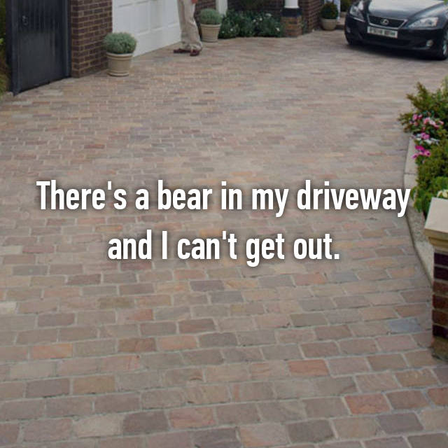 There's a bear in my driveway and I can't get out.