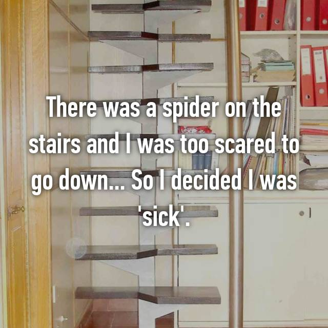 There was a spider on the stairs and I was too scared to go down... So I decided I was 'sick'.