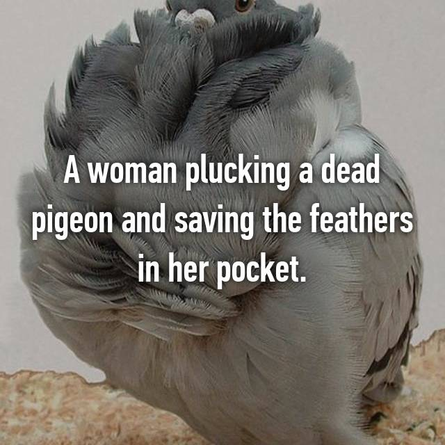 A woman plucking a dead pigeon and saving the feathers in her pocket.