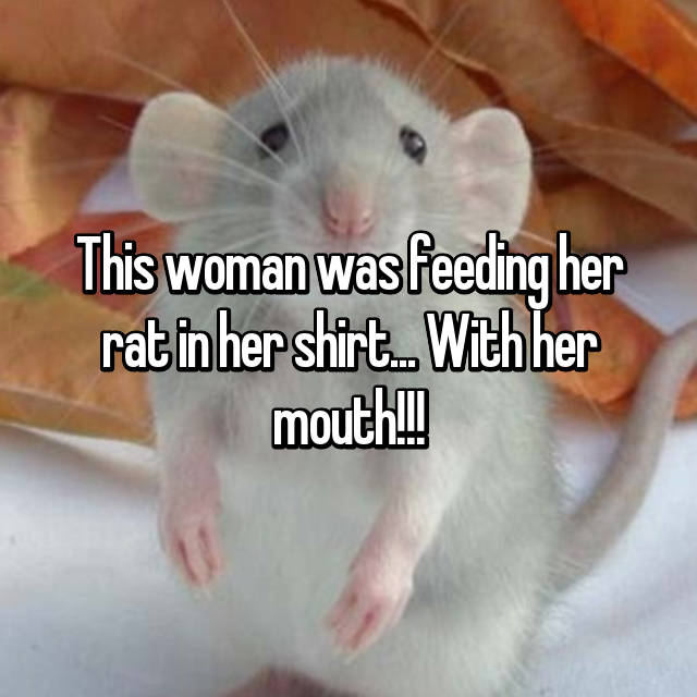 This woman was feeding her rat in her shirt... With her mouth!!!