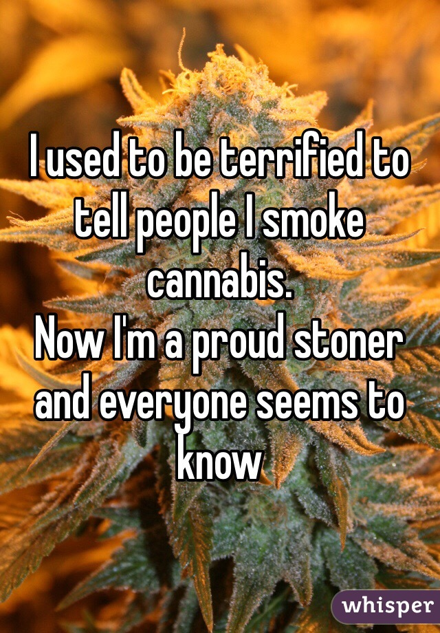 0509405496e68d28577345984de3bfd4fd4aca wm 18 Reasons Why People Are Proud To Smoke Weed