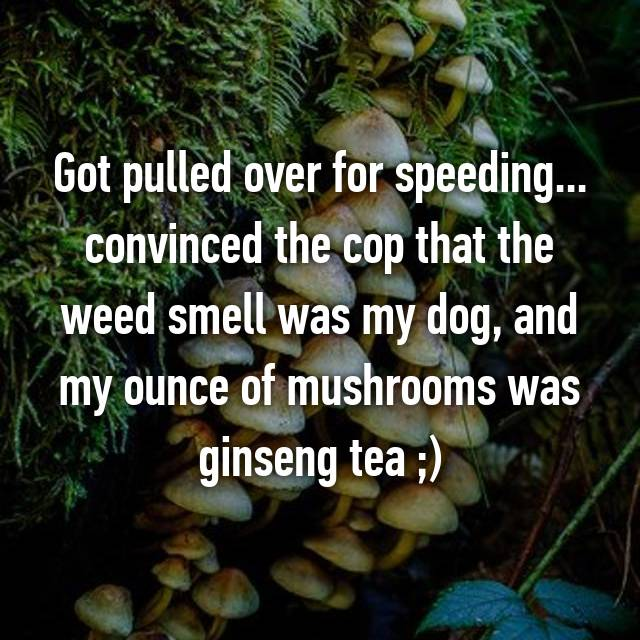 Got pulled over for speeding... convinced the cop that the weed smell was my dog, and my ounce of mushrooms was ginseng tea ;)
