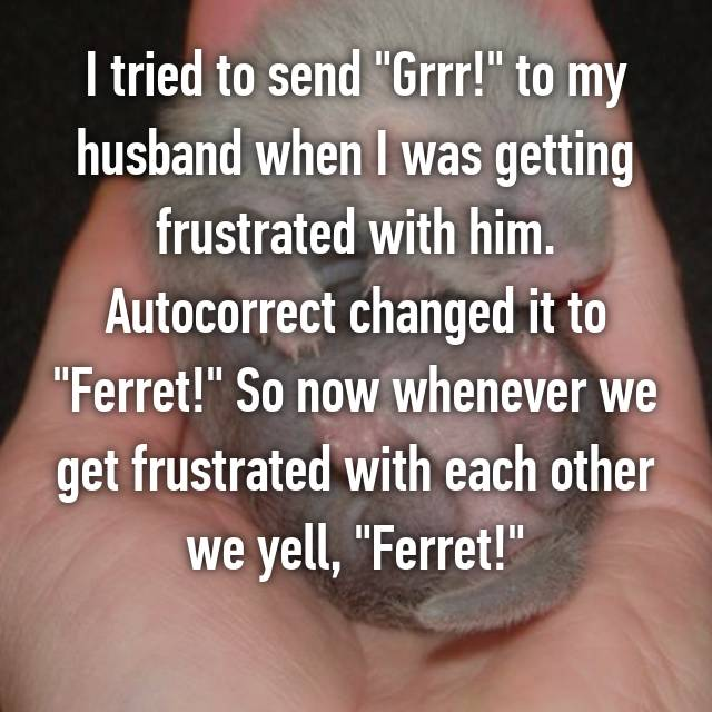 "I tried to send ""Grrr!"" to my husband when I was getting frustrated with him. Autocorrect changed it to ""Ferret!"" So now whenever we get frustrated with each other we yell, ""Ferret!"" 😂"