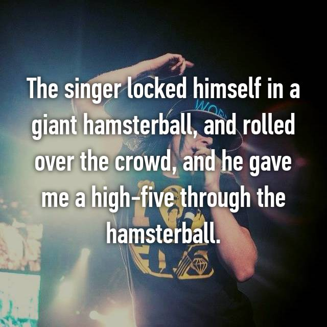 The singer locked himself in a giant hamsterball, and rolled over the crowd, and he gave me a high-five through the hamsterball.