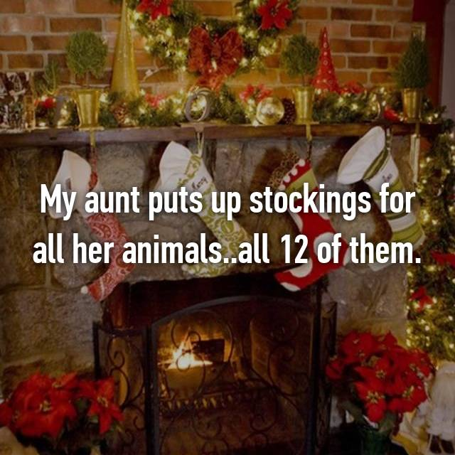 My aunt puts up stockings for all her animals..all 12 of them.