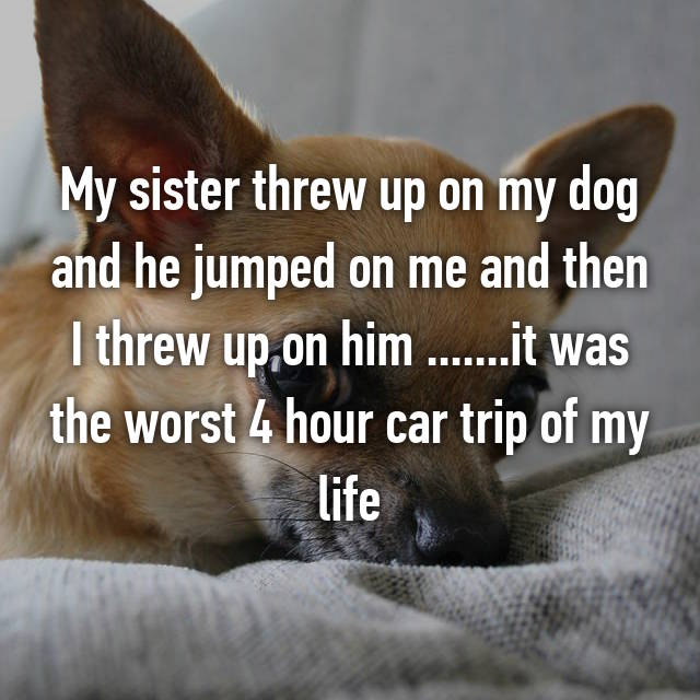 My sister threw up on my dog and he jumped on me and then I threw up on him .......it was the worst 4 hour car trip of my life