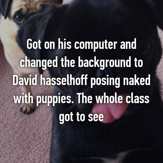 Got on his computer and changed the background to David hasselhoff posing naked with puppies. The whole class got to see😅