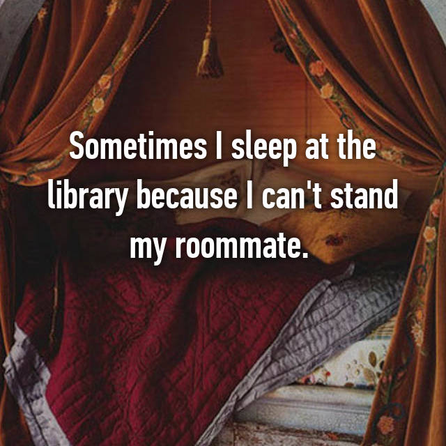 Sometimes I sleep at the library because I can't stand my roommate.