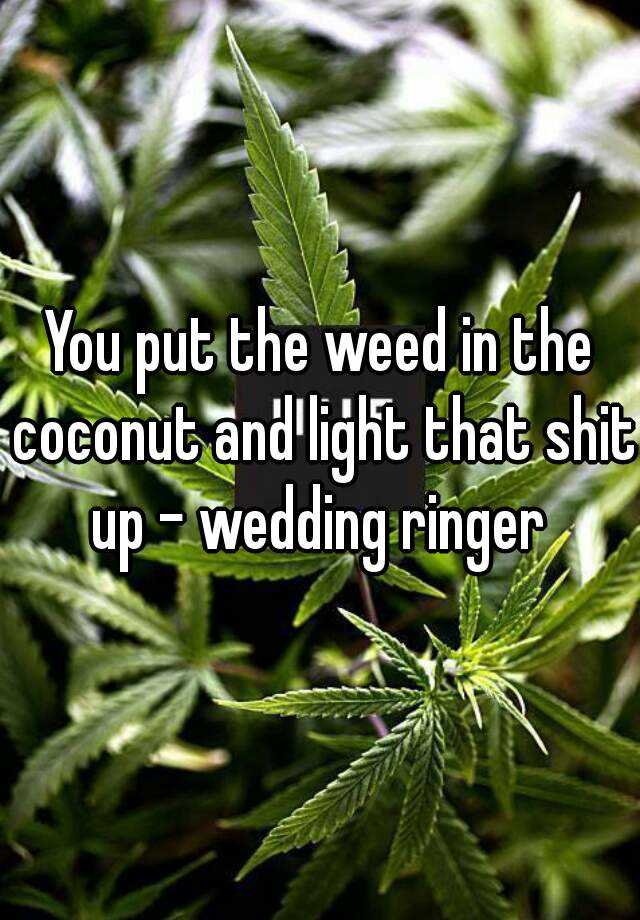 Lyric lime and the coconut lyrics : You put the weed in the coconut and light that shit up - wedding ...