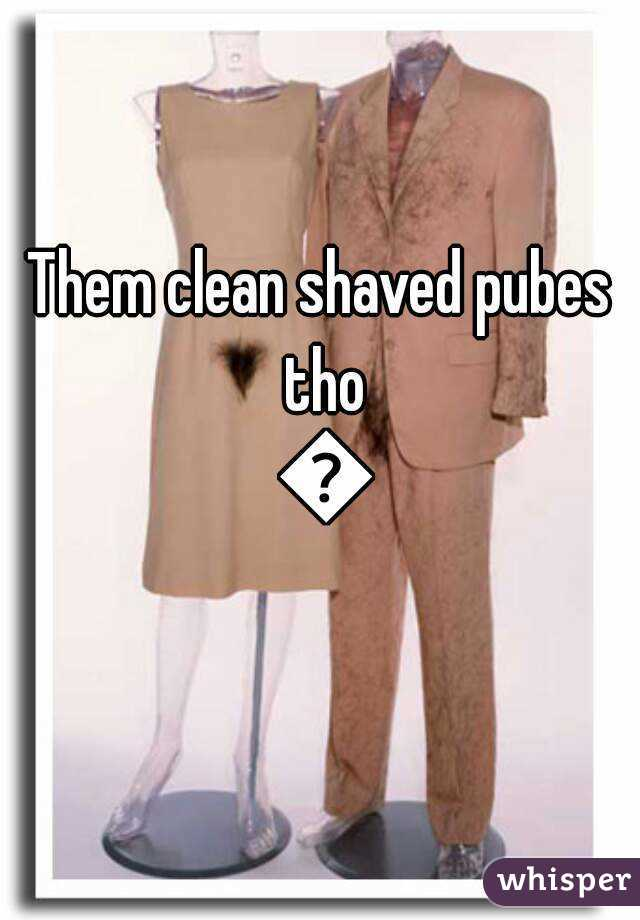Clean shaved pubes