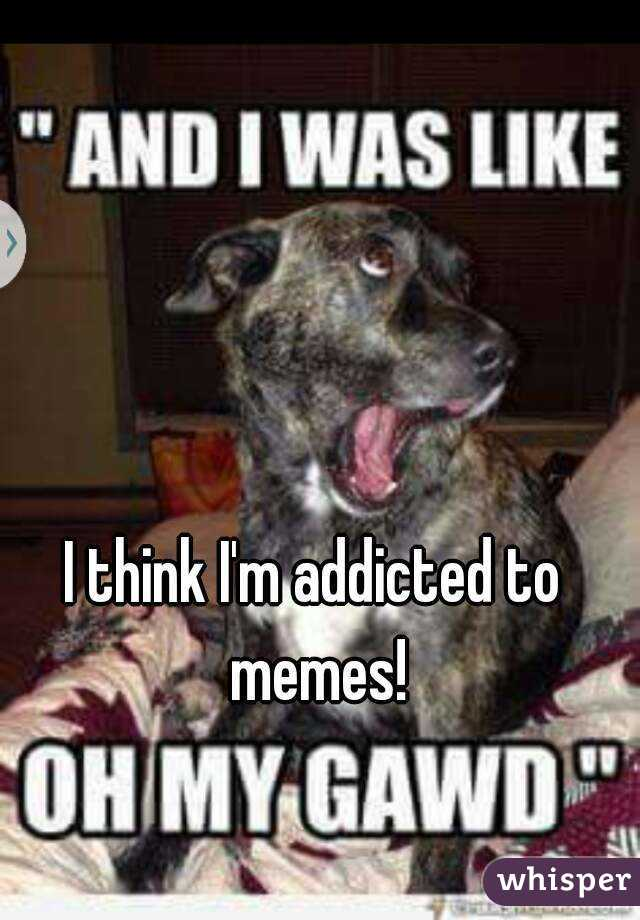 05103211c535b49950811ba0427e9841f21e7 wm?v=3 think i'm addicted to memes!,Addicted To Memes