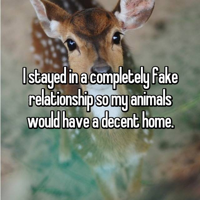 I stayed in a completely fake relationship so my animals would have a decent home.