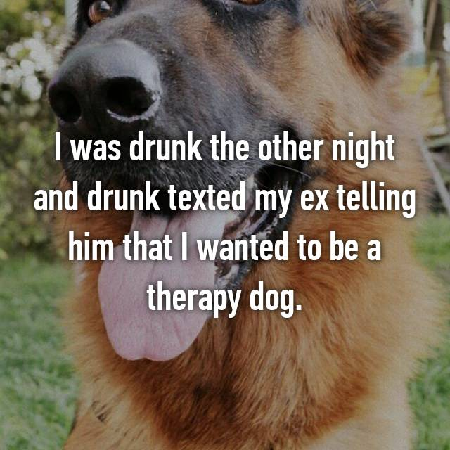 I was drunk the other night and drunk texted my ex telling him that I wanted to be a therapy dog.