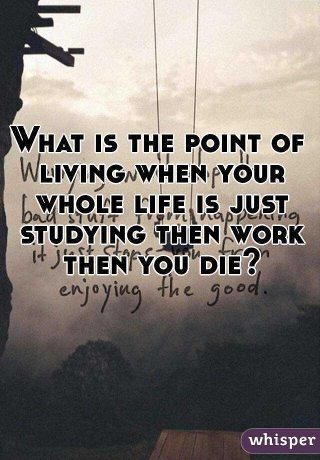 Work Work WORK then you die