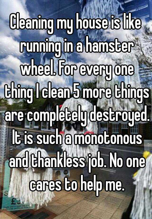 Cleaning my house is like running in a hamster wheel. For every ...