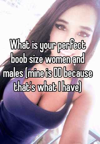 What is your perfect boob size women and males (mine is DD because ...
