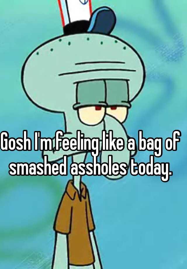 Bag of smashed assholes