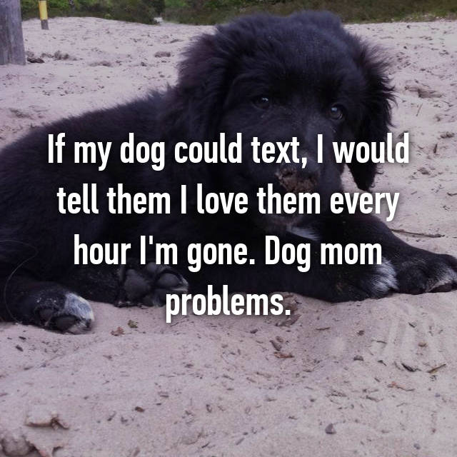 If my dog could text, I would tell them I love them every hour I'm gone. Dog mom problems.