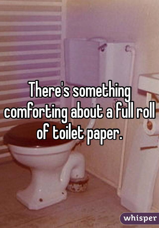 There's something comforting about a full roll of toilet paper.