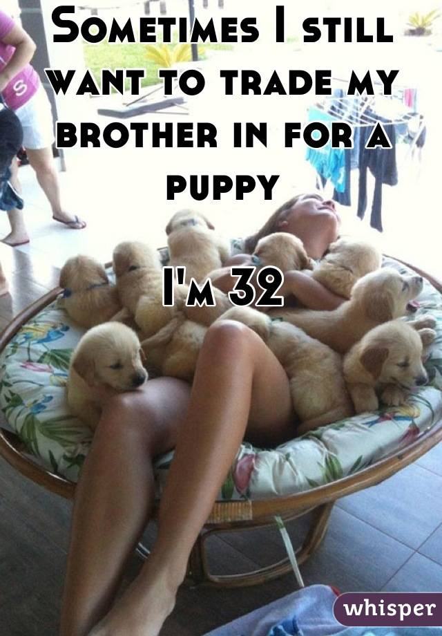 Sometimes I still want to trade my brother in for a puppy  I'm 32