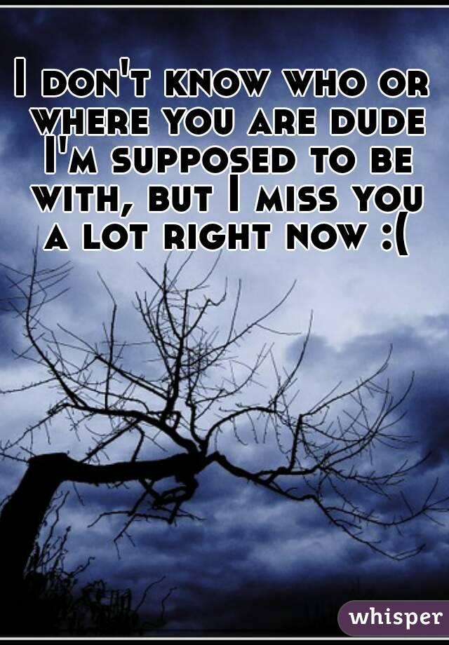 I know I can't tell you this, but I miss you. A lot. - Whisper